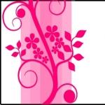 minicarte1